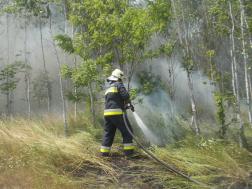 Nyírfaerdő aljnövényzete égett Debrecen külterületén