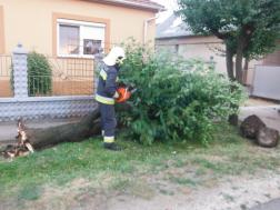 Kidőlt fát vágnak a hajdúböszörményi tűzoltók